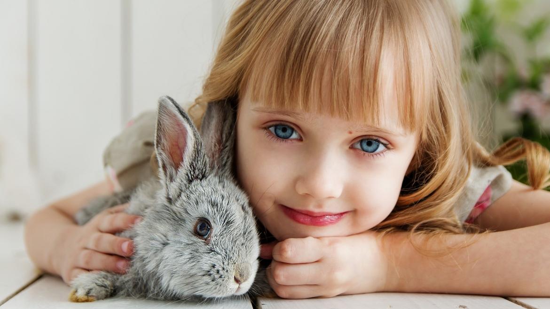 Diventare operatore pet therapy